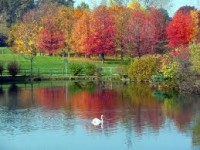 The most beautiful parks and gardens in Turin
