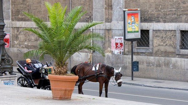 Horse carriage in Palermo, ©russelljsmith/Flickr